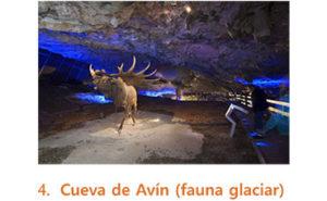 Cueva de Avin