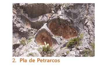 Pla de Petrarcos